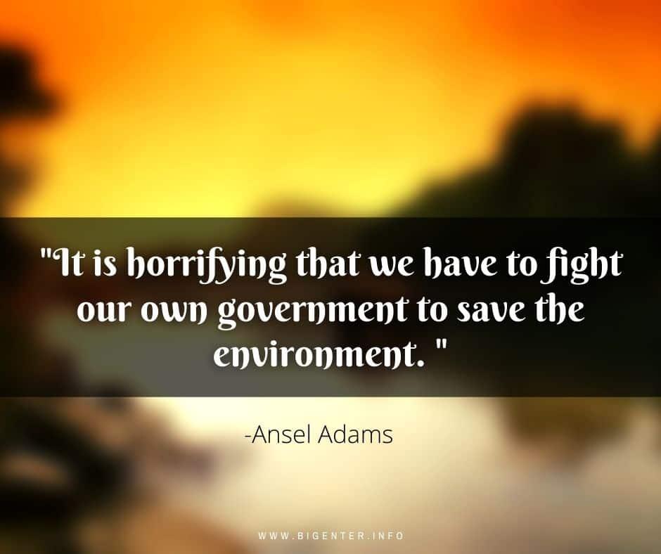 Ansel Adams Quotes