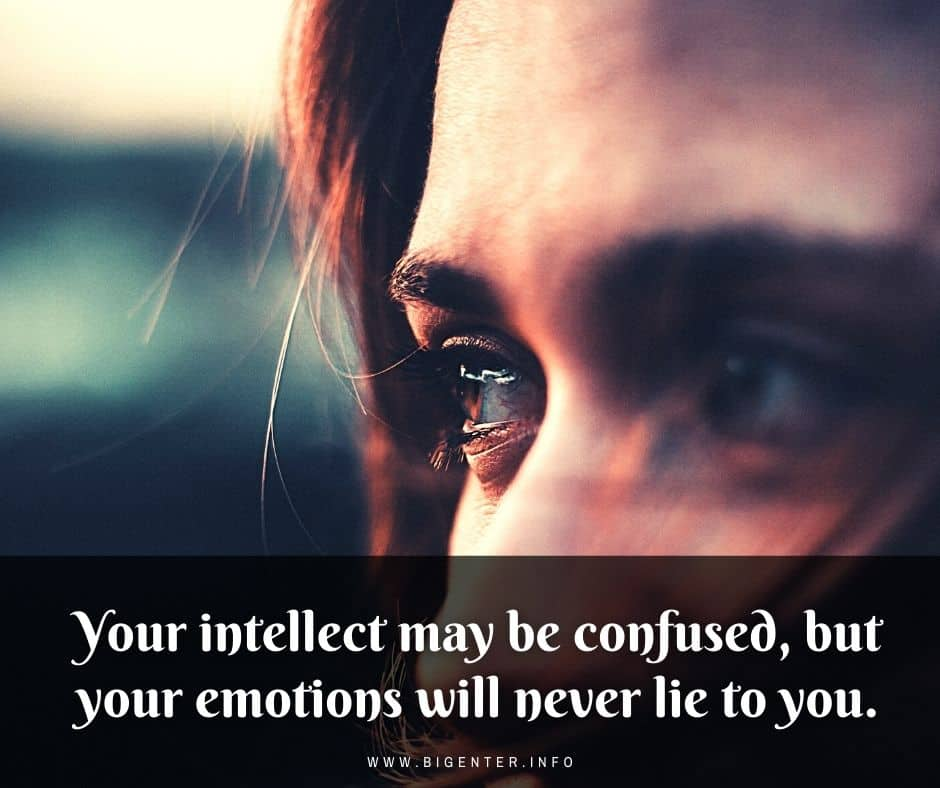 Being Confused Quotes