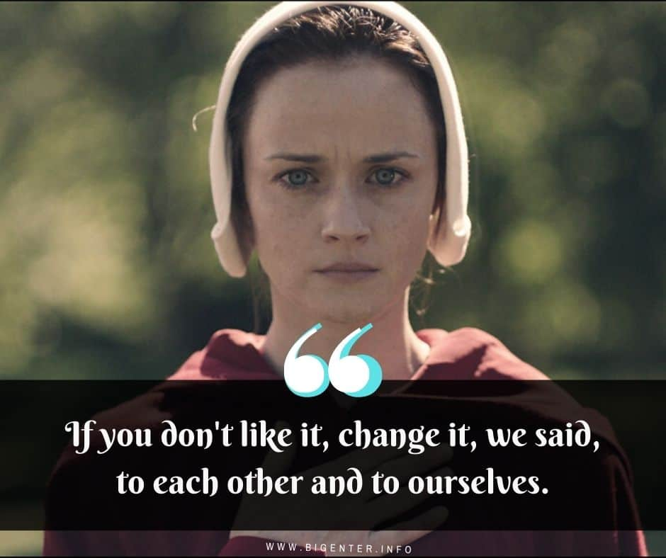 Handmaid's Tale Quotes Book