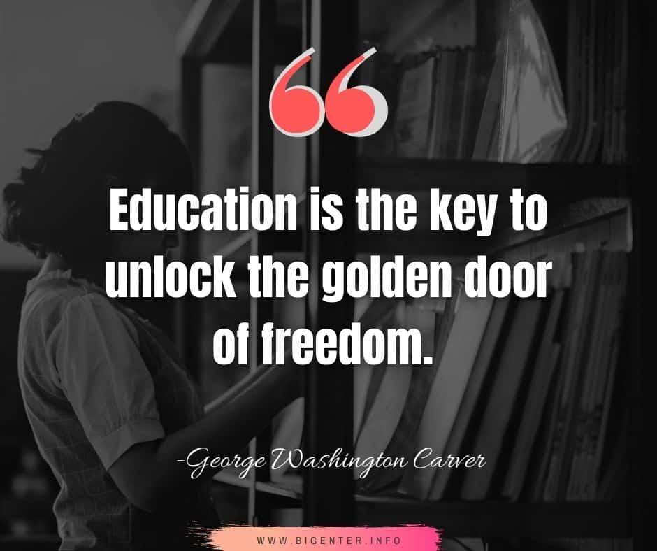 True Freedom Quotes