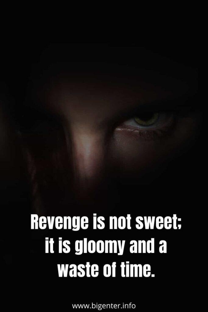 No  Revenge Quotes